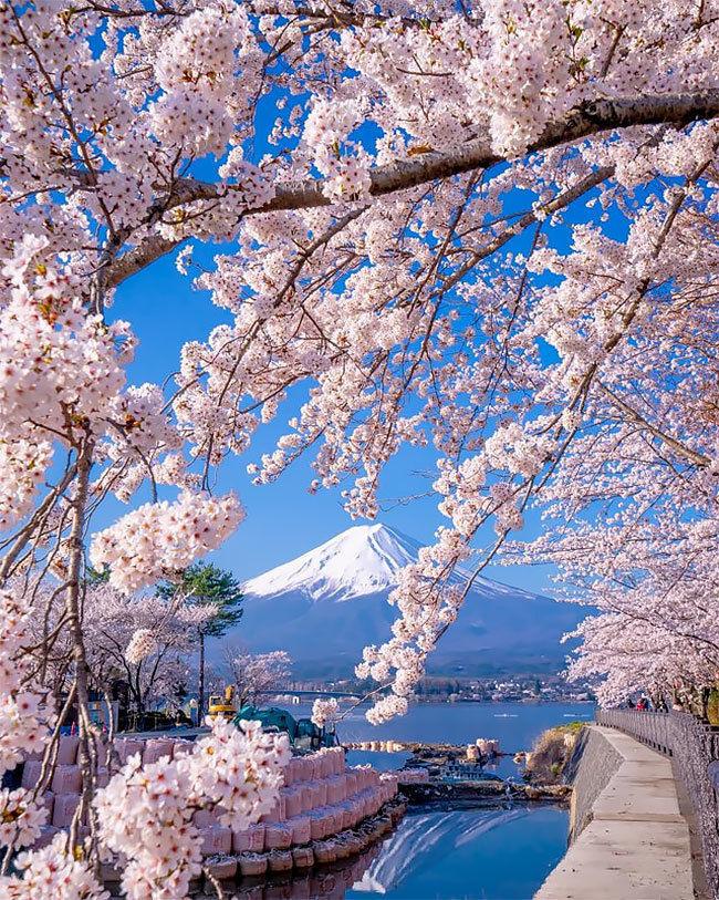 небольшая деревушка картинки весны в японии женщины
