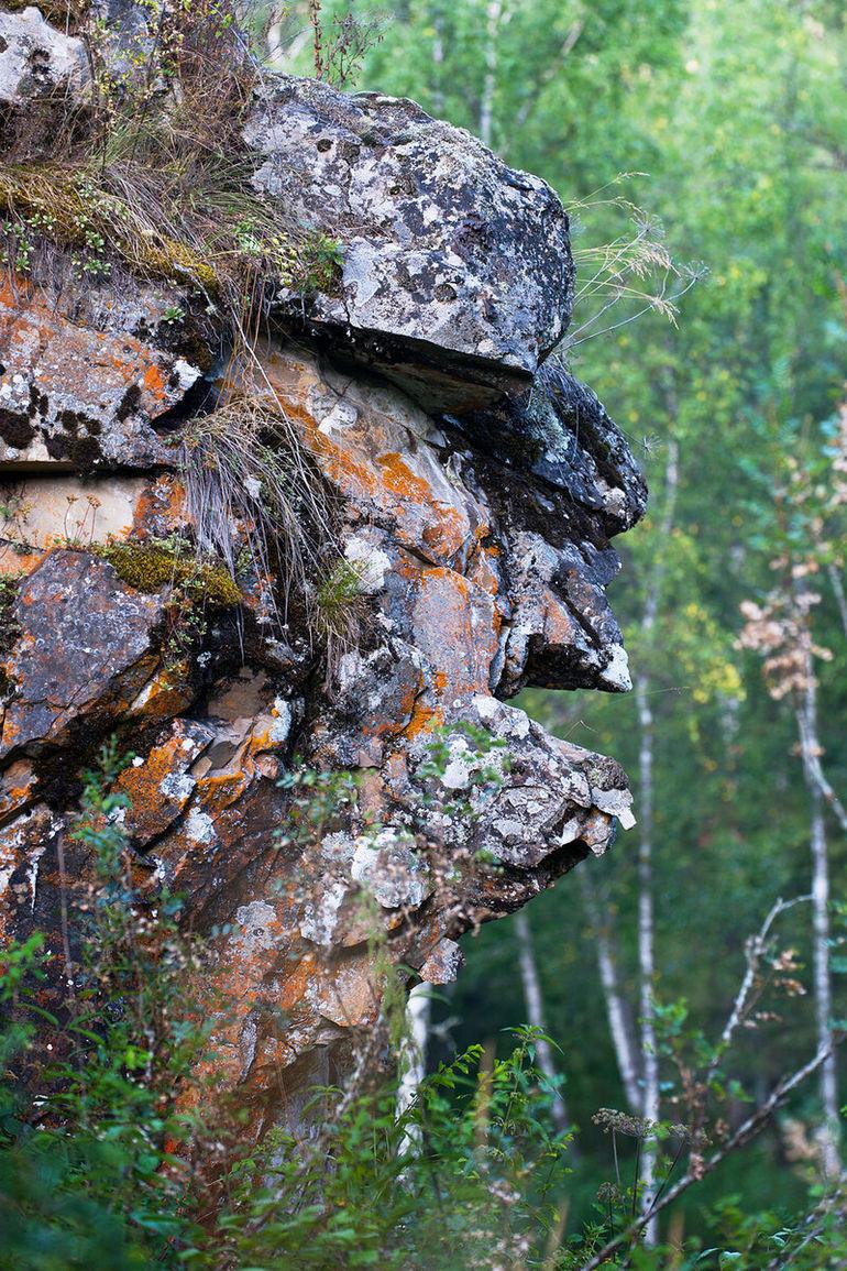 На что похож Алтай - необычный взгляд местного фотографа на Золотой край