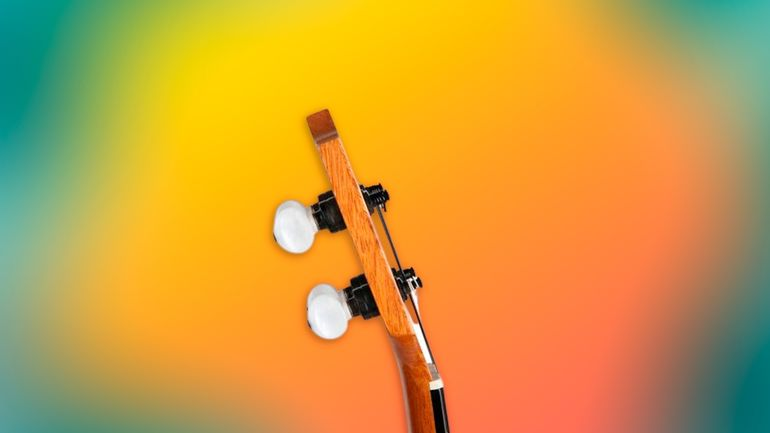 Как выбрать укулеле: гид для новичков в мире компактных гитар